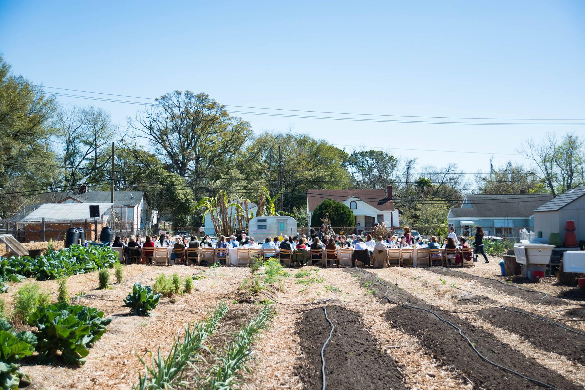 Fresh Future Farm CHWFF.jpg